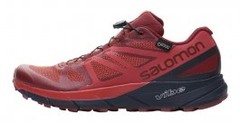 Кроссовки Salomon Sense Ride G-TX